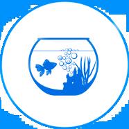 оформление аквариумов на заказ в Минске