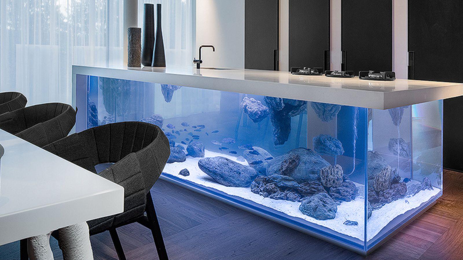 заказать аквариум в интерьере