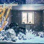 Вид в аквариуме