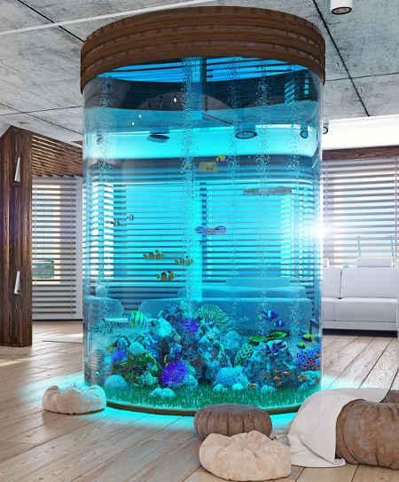 Высокий морской аквариум
